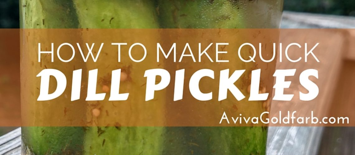 How to Make Quick Dill Pickles - AvivaGoldfarb.com